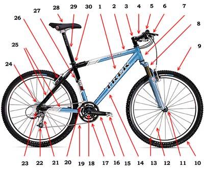 Схема велосипеда.